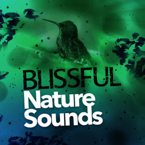 Blissful Nature Sounds