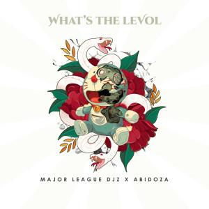 Album What's The Levol from Major League Djz
