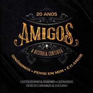 Album Sinônimos / Pense Em Mim / É o Amor from Zezé Di Camargo & Luciano