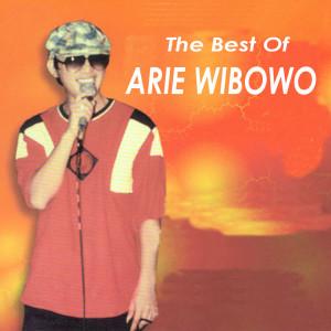 The Best Of dari Arie Wibowo