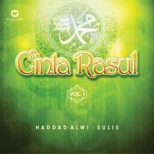 Dengarkan Yaa Robbi Bil Mustofa Yaa Rasulullah Salamun 'Alaik lagu dari Haddad Alwi dengan lirik