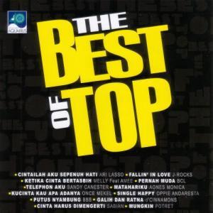 The Best Of Top dari Various Artists