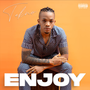 Listen to Enjoy song with lyrics from Tekno