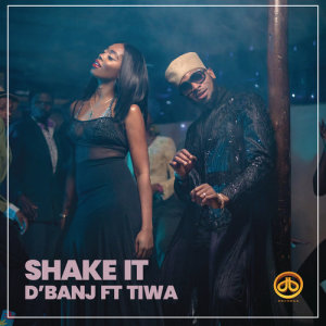 Listen to Shake It (feat. Tiwa Savage) song with lyrics from D'banj