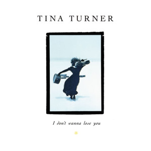 Tina Turner的專輯I Don't Wanna Lose You (The Singles)
