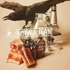 Album Birds And Microscopes And Bottles Of Elixirs And Raw Steak And A Bunch Of Songs from Norma Jean