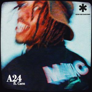 A24 dari Cuco