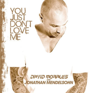 收聽David Morales的You Just Don't Love Me (Radio Edit)歌詞歌曲