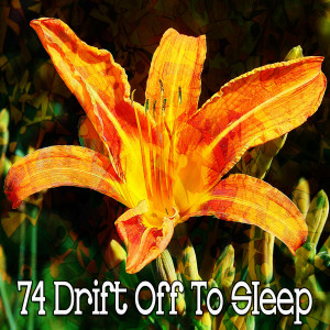 Album 74 Drift Off to Sleep from Sounds of Nature Relaxation