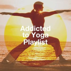 Kundalini: Yoga的專輯Addicted to Yoga Playlist