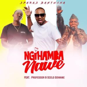 Album NgiHamba Nawe Single from Sparks Bantwana