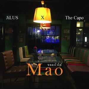 อัลบัม ชนแก้วให้เมา (Mao) ศิลปิน JiLUS