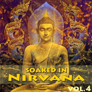 Soaked In Nirvana, Vol.4
