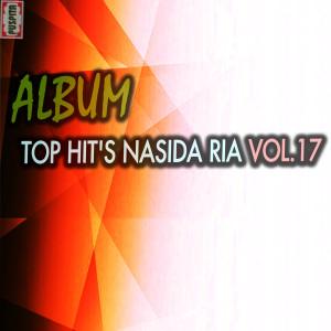 Top Hit's, Vol. 17