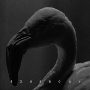 Album Somebody from Hurts