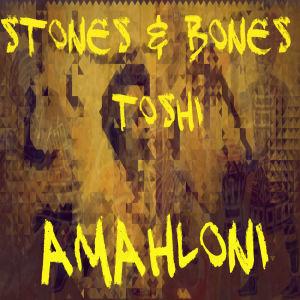 Album Amahloni from Toshi
