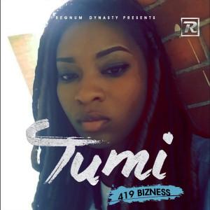 Album 419 Bizness from Tumi