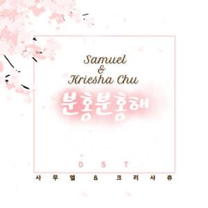 อัลบั้ม Pink Pink OST