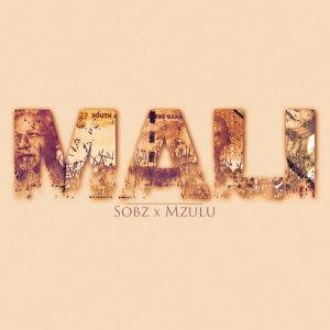Album Mali from Mzulu