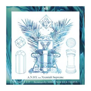 Album Pump It Up (feat. Nyemiah Supreme) [The Remixes] from A.N.D.Y.