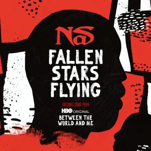 Album Fallen Stars Flying from Nas