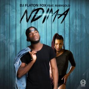 Album Ndima from DJ Flaton Fox