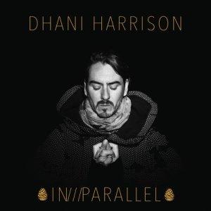 Album Summertime Police from Dhani Harrison