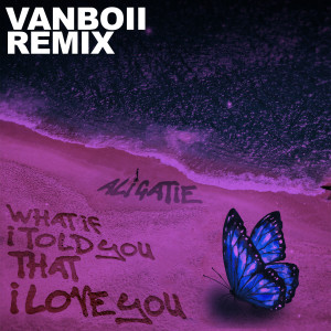 Album What If I Told You That I Love You (Vanboii Remix) from Ali Gatie