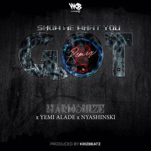 Album Show Me What You Got (Remix) from Nyashinski