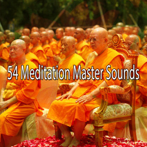 Album 54 Meditation Master Sounds from Yoga Workout Music