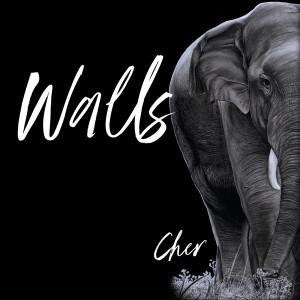 Cher的專輯Walls