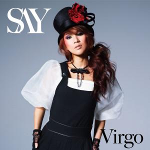 Virgo 2011 SAY