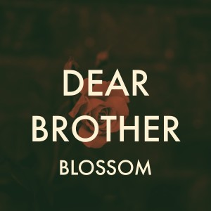 Album Dear Brother from Blossom