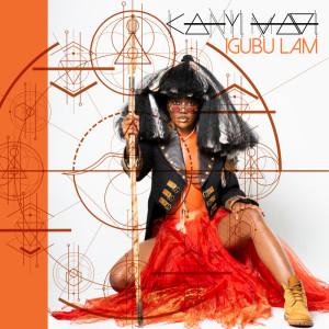 Album Iinkwenkwezi from Kanyi Mavi