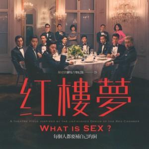 陳建騏的專輯陳建騏劇場音樂紀錄23:紅樓夢