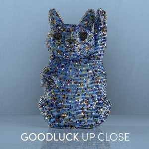 Album GoodLuck Up Close Album from Goodluck