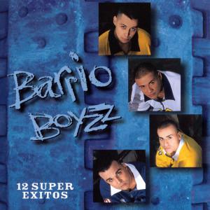 12 Super Exitos 1997 Barrio Boyzz