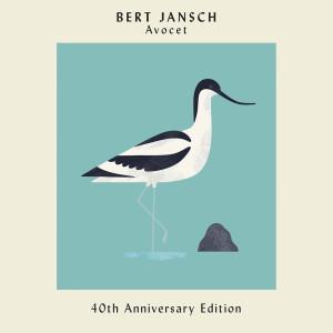 Album Avocet (40th Anniversary Edition) from Bert Jansch