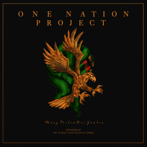 Album One Nation Project (Explicit) from Various