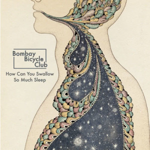 How Can You Swallow So Much Sleep 2012 Bombay Bicycle Club