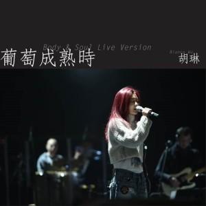葡萄成熟時 (body and soul live version)