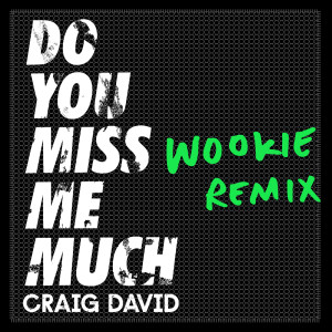 Album Do You Miss Me Much (Wookie Remix) from Craig David