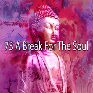 Album 73 A Break for the Soul from Meditacion Música Ambiente
