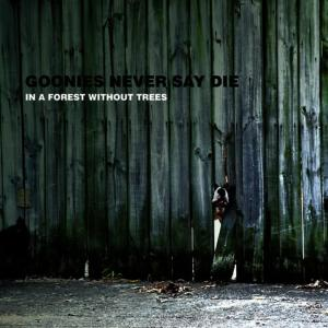 Listen to Everyone Comes To Life song with lyrics from Goonies Never Say Die