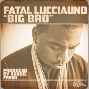 Album Big Bro from Fatal Lucciauno