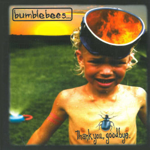 Album Thank You, Goodbye from Bumblebees