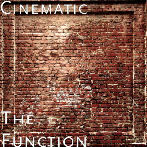Album The Function (Explicit) from Cinematic