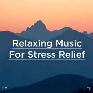 Nature Sounds Nature Music的專輯Relaxing Music For Stress Relief