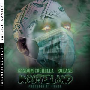 Album Wasteland from Kokane