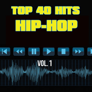 Listen to The Next Episode (Originally Performed by Dr. Dre & Snoop Dogg) song with lyrics from Top 40 Hits